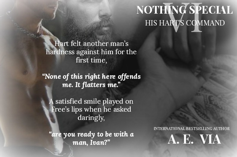 Nothing Special VI: His Hart's Command – VIA Star Wings Books